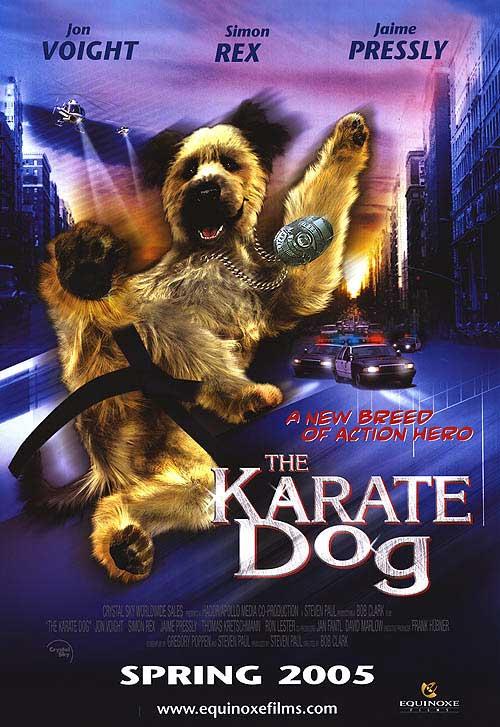 Lackluster Video The Karate Dog 2004 Fun Time Internet
